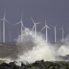 Windpark Westermeerwind bereikt in de testfase al het maximale vermogen van 144 MW (@Westermeerwind)